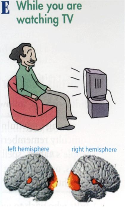 テレビ視聴時の脳の状態