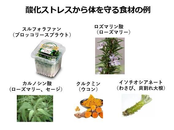 酸化ストレスから体を守る食材
